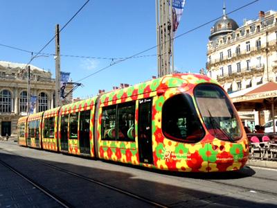 madoka_tram_hana.jpg